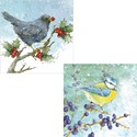 RSPB Luxury Christmas Card Pack - Berries & Birds