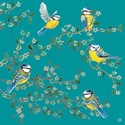 Quayside Gallery Card Collection - Blue Tits On Blossom